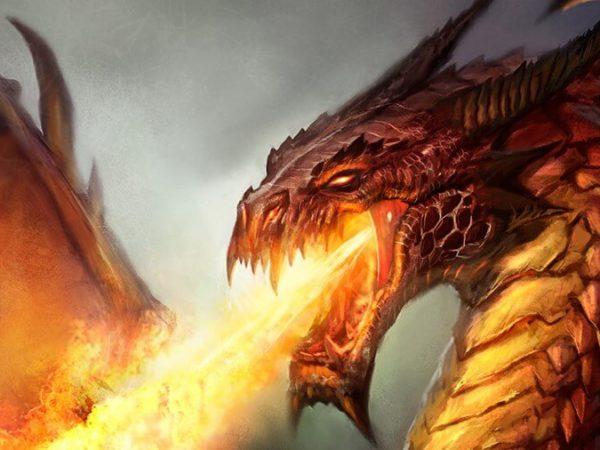 Testing dragon